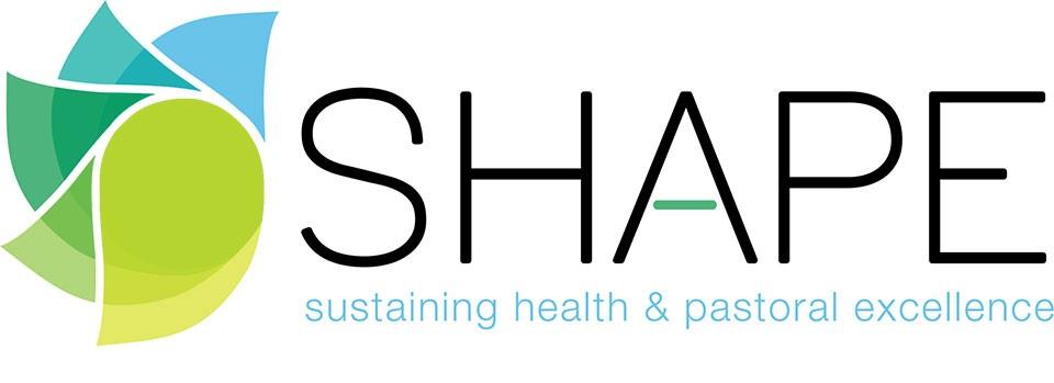 shape-banner