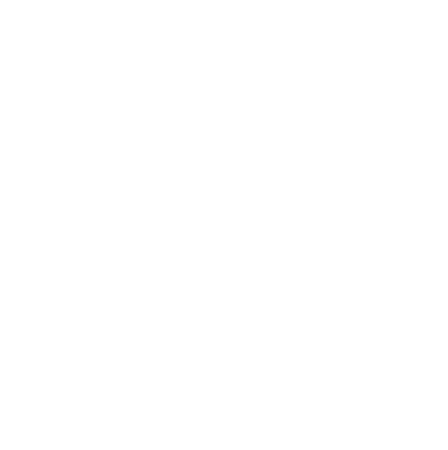 20-21-logo